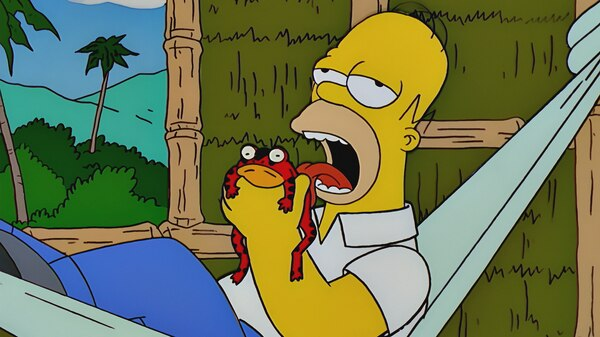 Make weed legal. Tax it. Help fix the toads.  Simpsons_11_15_P3